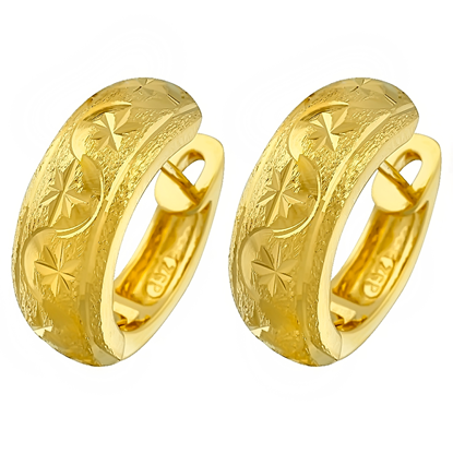 Picture of Gold Plated Earrings Jewellery (ER8308)